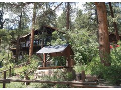 446 Riverside Dr Lyons, CO 80540